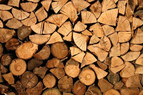 Baumfällung und baumschnitt Köln Porz